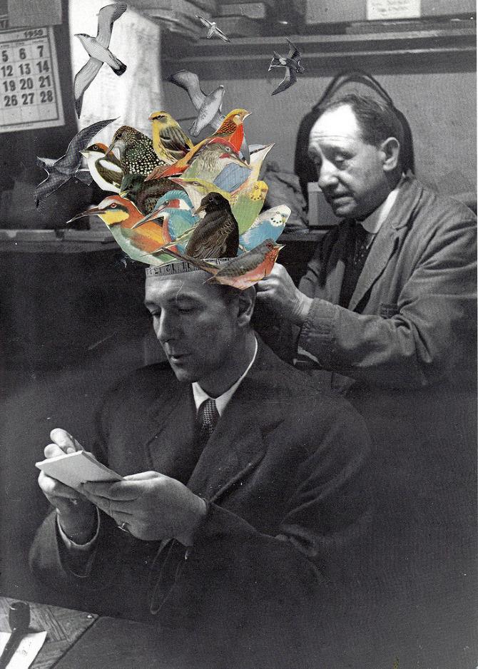 Ben Giles collage 3