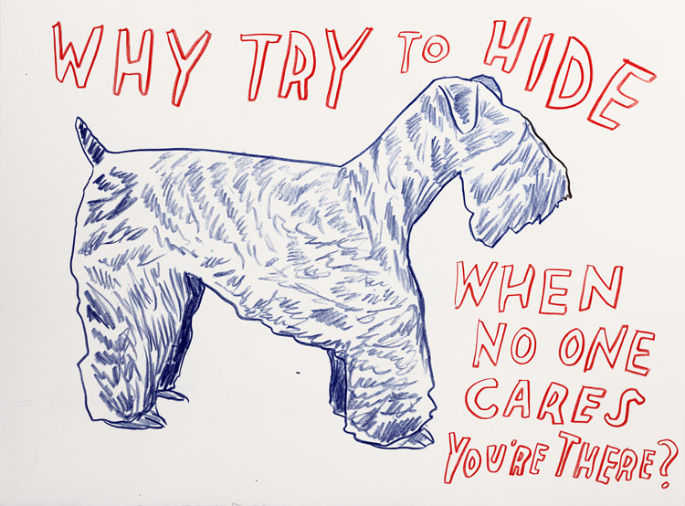 Dave_Eggers_Why-try-to-hide-when-no-one-cares-youre-there-sm